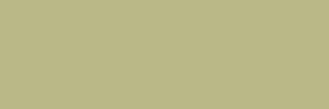 MTN 94 - 149-verde-bonsai