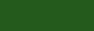 MTN Water Based 300ml. - 65-brillant-green-deep
