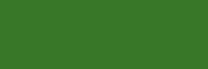 MTN Water Based 300ml. - 60-brillant-yellow-green-dark